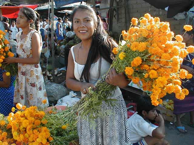 Xempasúchil bloemen zie je op elk altaar voor de doden in de Díai de los muertos.