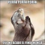porfa; finde, afkortingen in het Spaans
