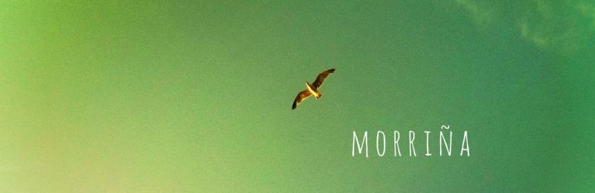 morriña-heimwee-snel-Spaans-leren-online-gratis-Spaans-leren-tilburg