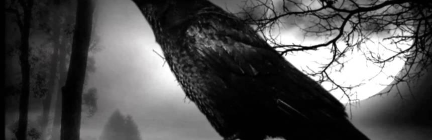Cría-cuervos-in-het-Nederlands-Spaanse-gezegden-leren-Spaans-online-leren